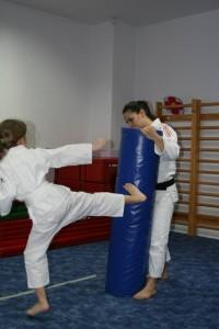 ju-jitsu minime